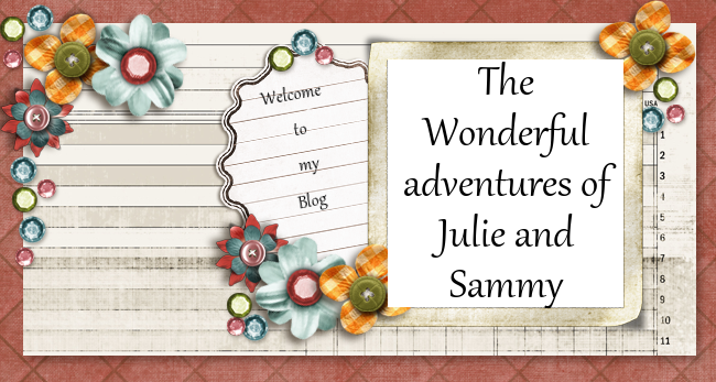 the wonderful adventures of Julie and Sammy