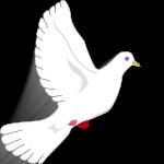 Oremos por la paz