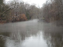 Winter Mill Pond