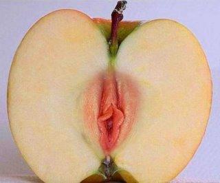 [bendito+seja+o+fruto..jpg]