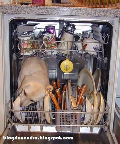 [lavando-os-pratos.jpg]
