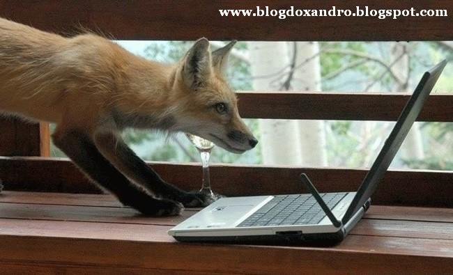 http://1.bp.blogspot.com/_X643PcxIPVk/SwwgijqIPlI/AAAAAAAAeUs/b-TQGwtRDrQ/s1600/Era+da+Inform%C3%A1tica.jpg