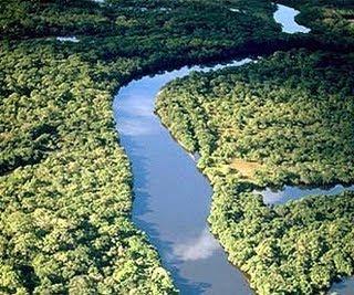 AMAZONAS NOSSA RESERVA NATURAL!
