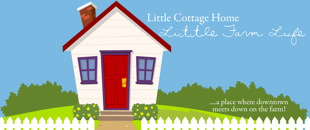 Little Cottage Home
