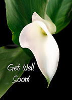 romantic get well soon card