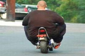 Lard Ass Fat Hoodie   Spreadshirt mgtowhq thumbs lardass