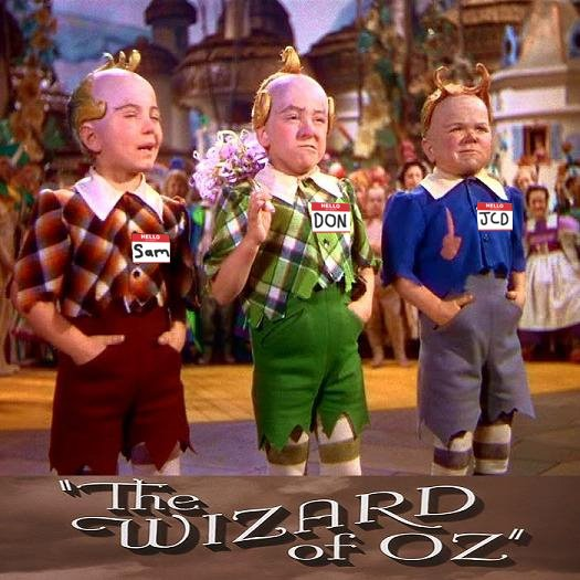 THE WIZARD OF OZ SHOW