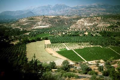 Mt. Ida, Crete, June, 1990