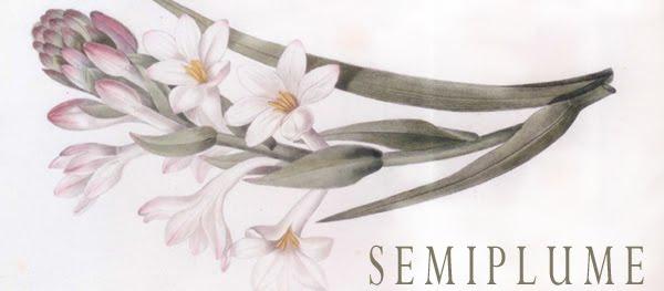 Semiplume