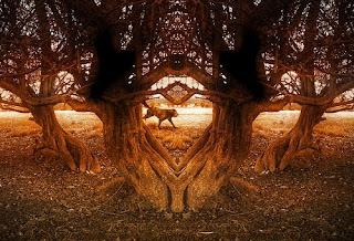 mythological lens Mythological definition, of or relating to mythology see more.