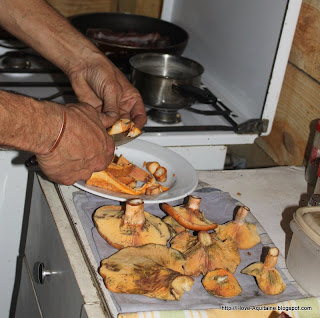 Cutting mushrooms for our lunch