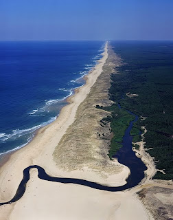 atlantic coast of Landes in southwest of France