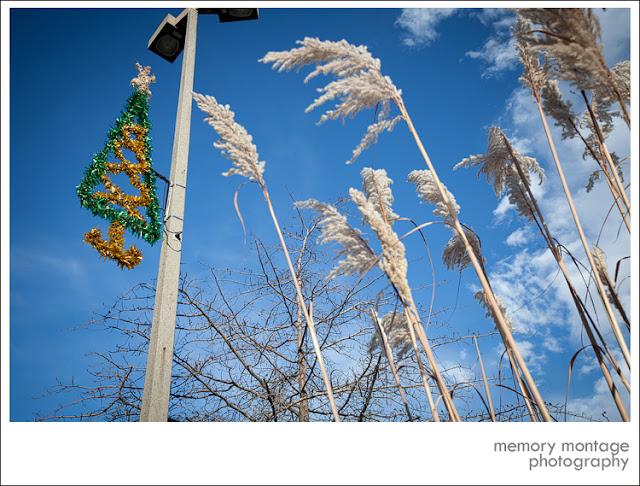 yakima photography