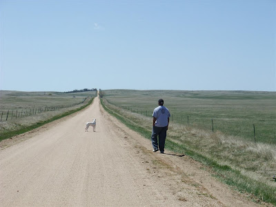 lonley road, dog, walk, dirt road