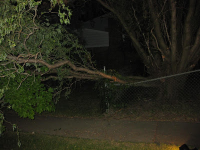 tree fall on fence, bend metal fence, fallen tree, at night