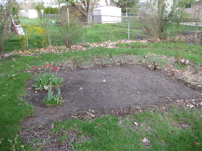 how to start a backyard garden, digging up grass, sod