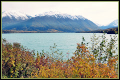 Fall on Kenai Lake