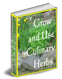 Grow and Use Culinary Herbs