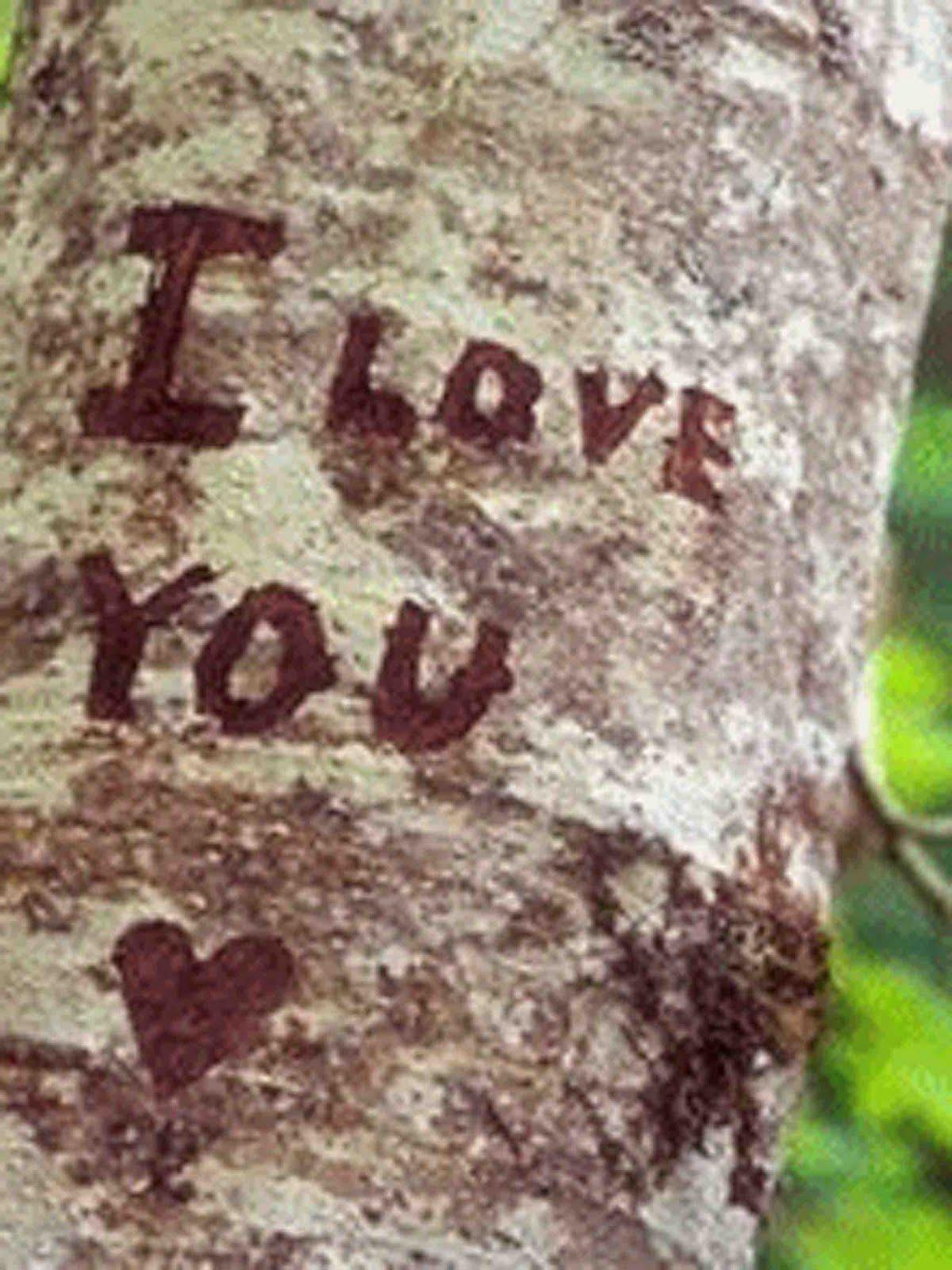 http://1.bp.blogspot.com/_XJpefzgJrLU/TB8YTjIBCyI/AAAAAAAAAz0/-O2DBGyp_xM/s1600/je-t-aime-sur-les-arbres_04.jpg