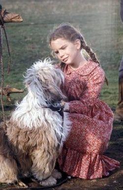 Mi peque a casa de la pradera las mascotas de la familia - Laura ingalls la casa de la pradera ...