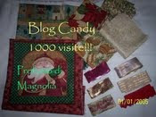 BLOG CANDY 1000 VISITE CLAUDIA