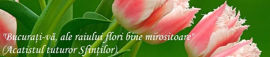 """""""Bucurati-va, ale raiului flori bine mirositoare"""" (Acatistul tuturor Sfintilor)."""