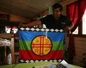 Trucker with Mapuche flag