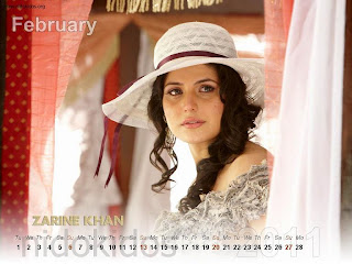 New Year 2011 Calendar, Katrina Lookalike Zarine Khan Desktop Wallpapers