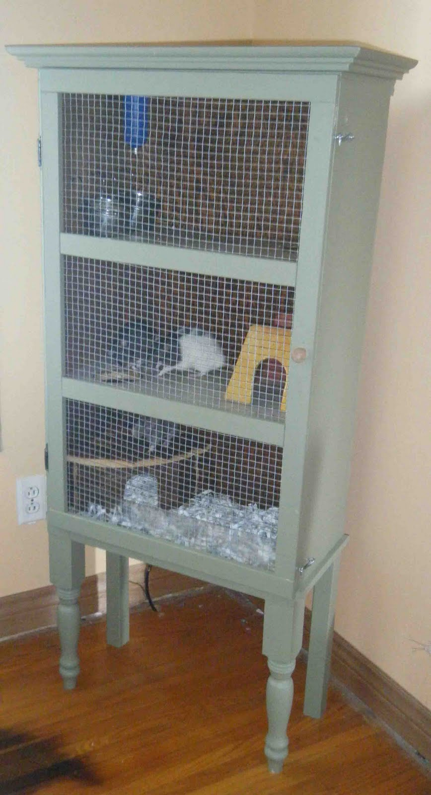 Xx Diy The Rat Cage