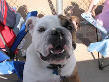 Biggie (The mascot)