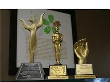 Prêmio: Mãos de ouro, Top Of Quality e Oscar Projeção Nacional