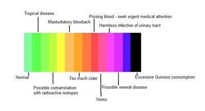 Urine Color Chart And What They Mean Car Interior Design