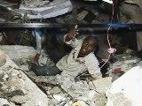 Solidariedade Haiti
