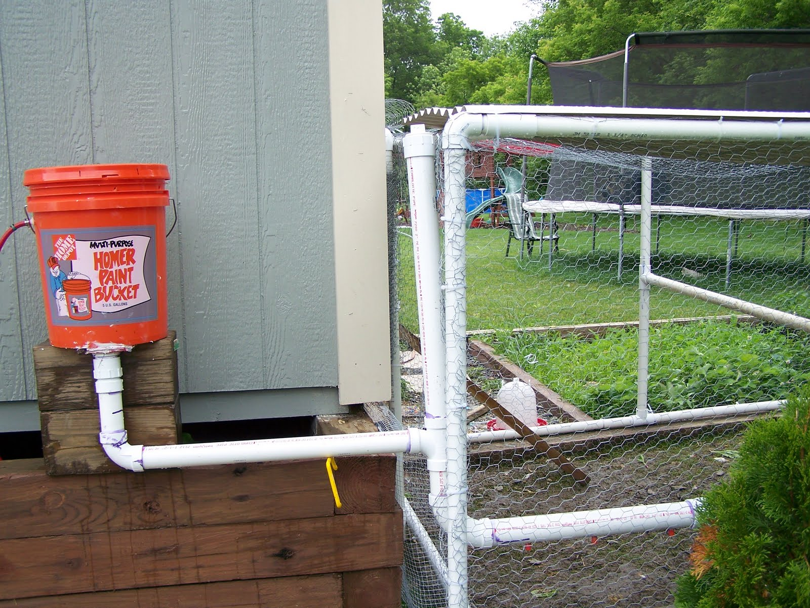 Automatic waterer for chickens diy sweepstakes