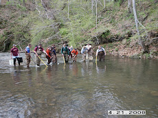 Fish sampling on Toms Creek