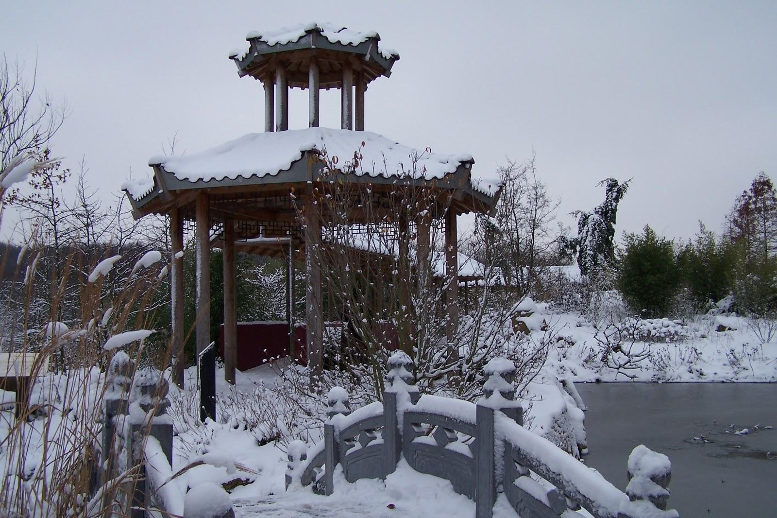 http://1.bp.blogspot.com/_XQ-efrqiuQ0/TP-6EK_zCrI/AAAAAAAAATE/4bujU_tu99Q/s1600/winter_japan.JPG