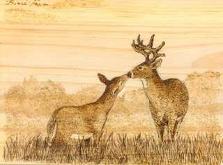 Branhan: Illustration: Wood Burning Wildlife