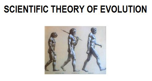 SCIENTIFIC THEORY OF EVOLUTION