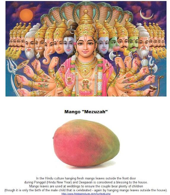 Mango Mezuzah