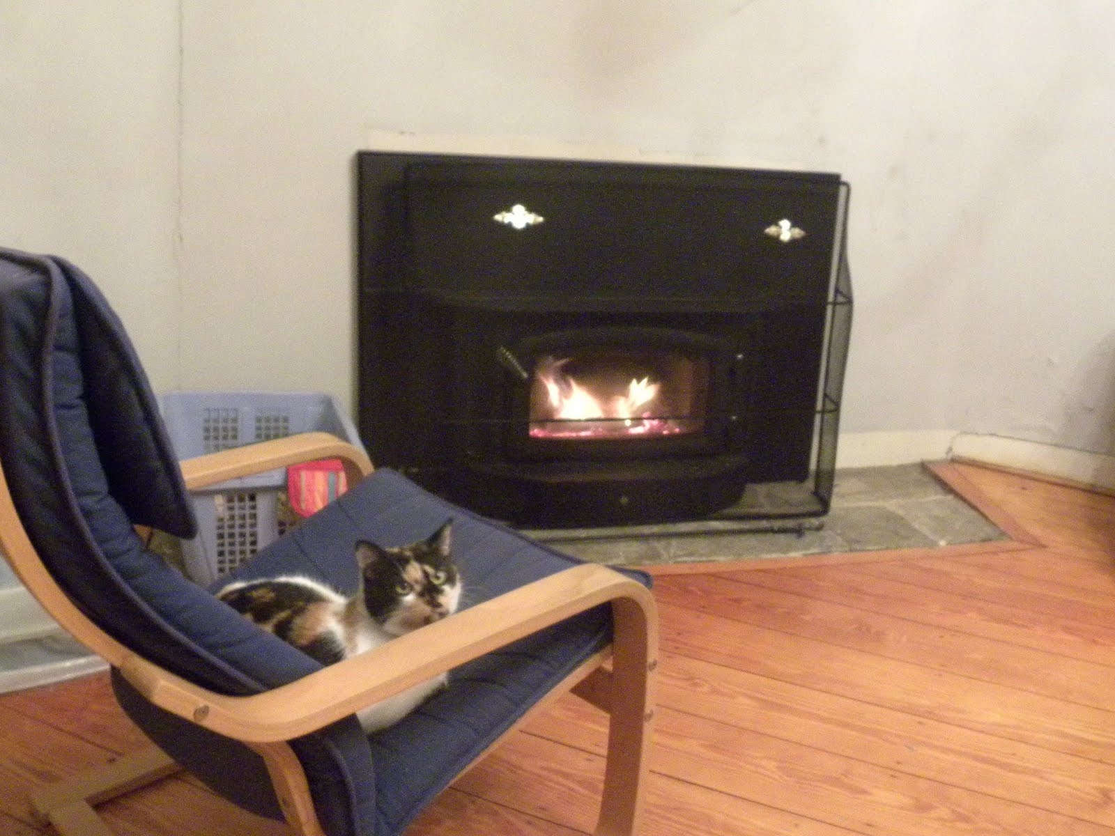 spritz loves her new regency i2400 wood stove insert