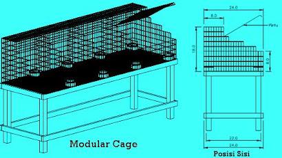 Modular Cage Plan