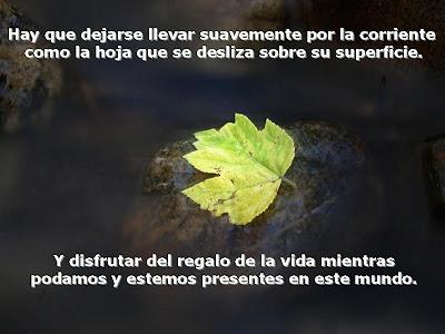 http://1.bp.blogspot.com/_XSC052klpKU/ShTlWJtqs8I/AAAAAAAADGQ/F7ncV1PYK4c/s400/reflexiones+de+la+vida.jpg
