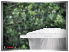 قطرات مطر ..
