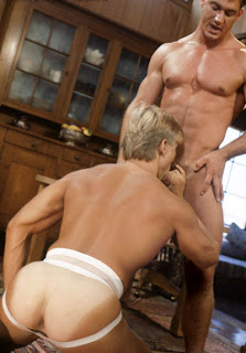 Steve fox gay blogspot