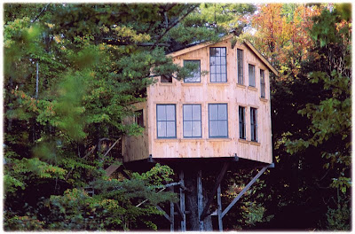 Amazing and Awesome Tree Houses ~ Now That\'s Nifty