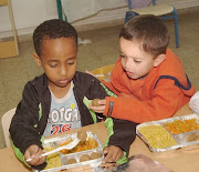 USA School LunchMeatballs and Rice. Country: USA (school lunches)
