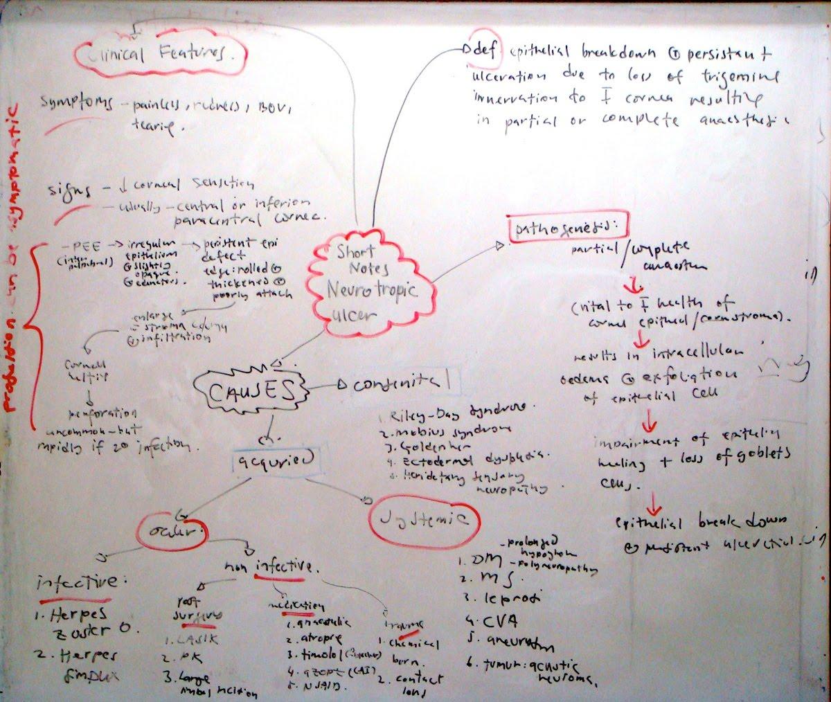 http://1.bp.blogspot.com/_XUbV6xXnb9E/S97UFnf6FzI/AAAAAAAAABs/4v0NkLKMjLU/s1600/neurotrop1.jpg