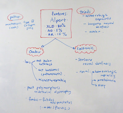 importance of dna essay Dna extraction methods that  yak, buffalo and goats are of great importance for the  a see table 1 for details of dna extraction methods b dna extractions.