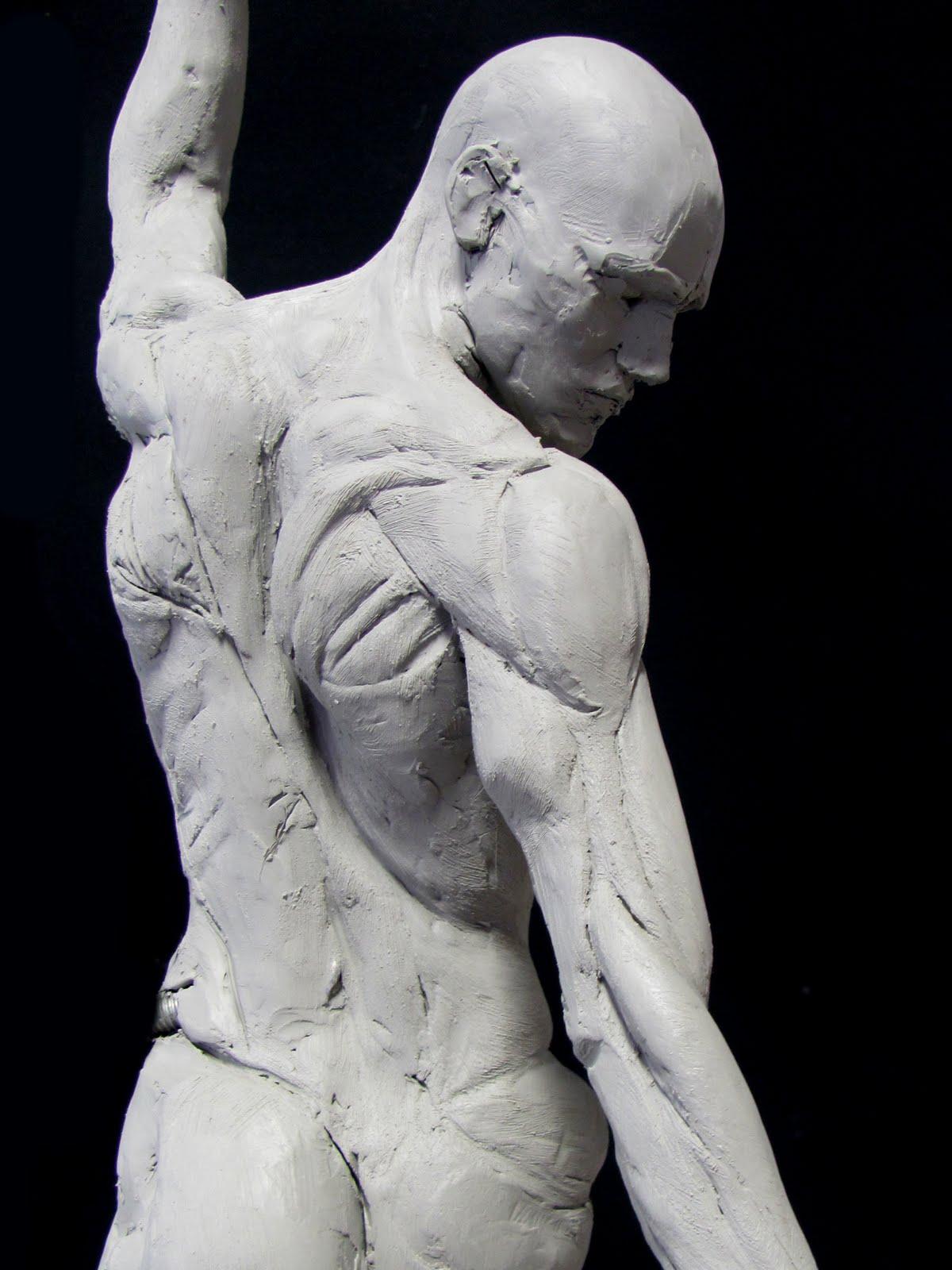 Visual Musings: Anatomy Tools Workshop