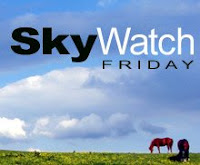 sky watch logo